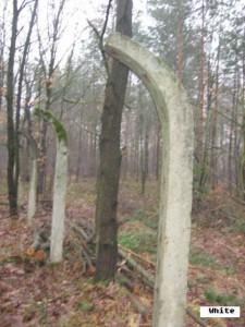 Pozostałości ogrodzenia