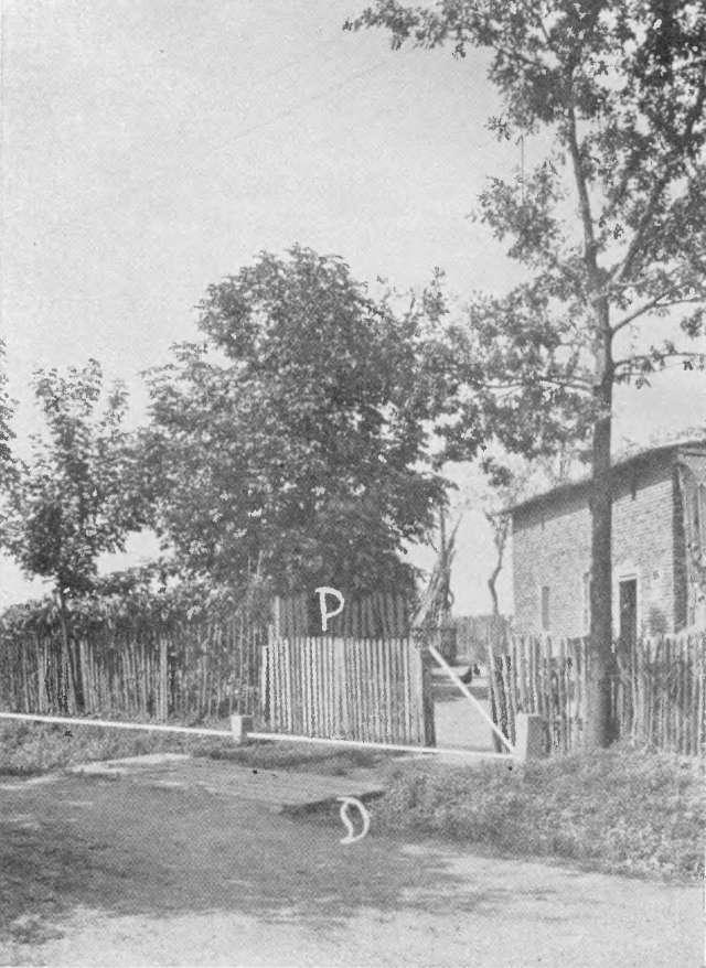 Granica pomiędzy domami w Kuźni Nieborowickiej.
