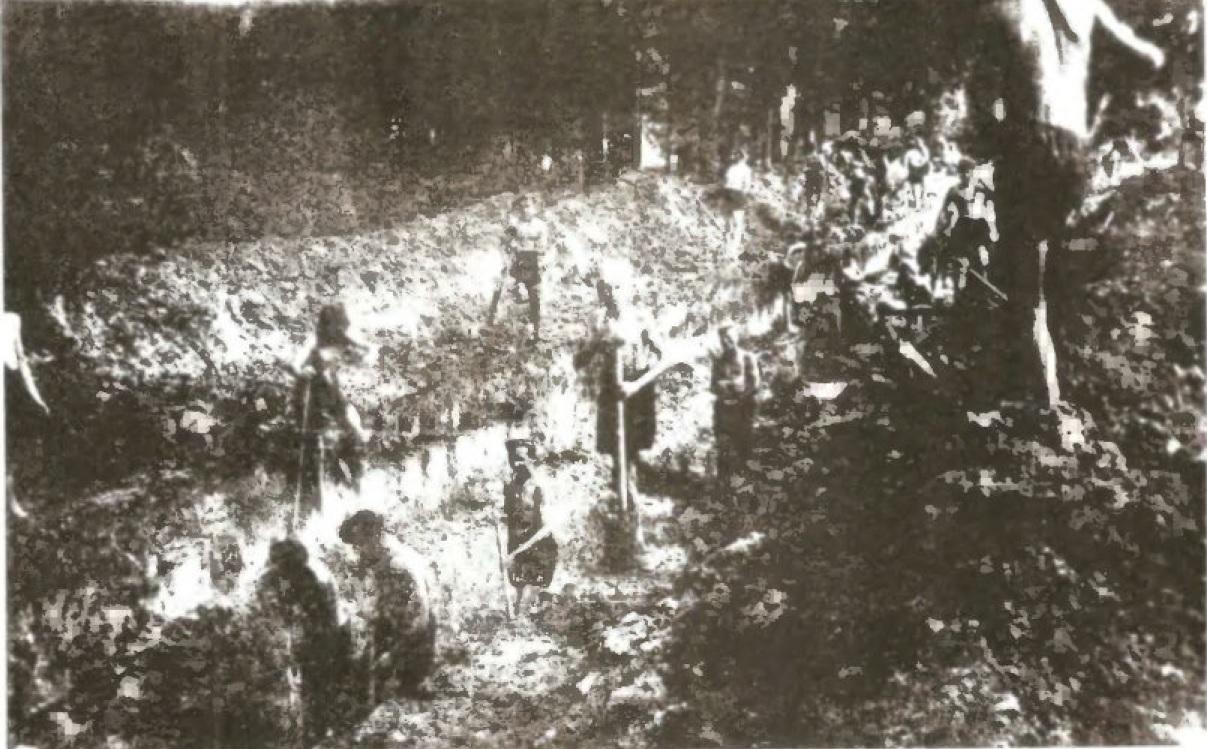 Kopanie rowu przeciwczołgowego w lesie k. Groß  Zeidel - lato 1944. Zdjęcie pochodzi z książki G. Guntera, Letzter Lorbeer, Augsburg 1976.