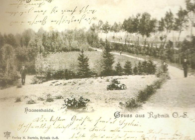Park założony przez Juliusza Haase, czyli Hasynhajda